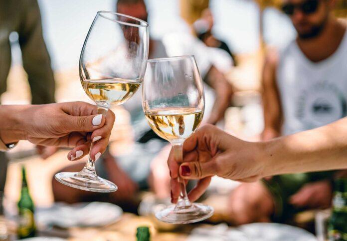 Best Wine Glasses NZ
